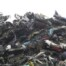 5. Прием лома и отходов металлолома